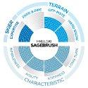 Scott Sagebrush 15/16